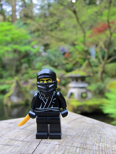 LEGO Collectible Minifigures Series 1 : Ninja | by wiredforlego