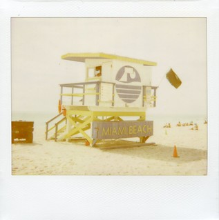 Miami Beach 'Roid Week 2012 | by Phillip Pessar