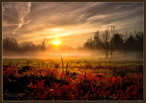 Sunrise Mist | by Paul Jolicoeur Photography