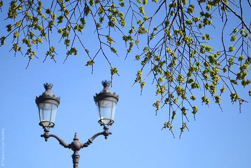 Lamppost in the sky | by Paris in Four Months