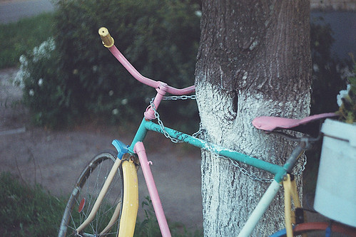 Tied bicycle | by Andrey Timofeev
