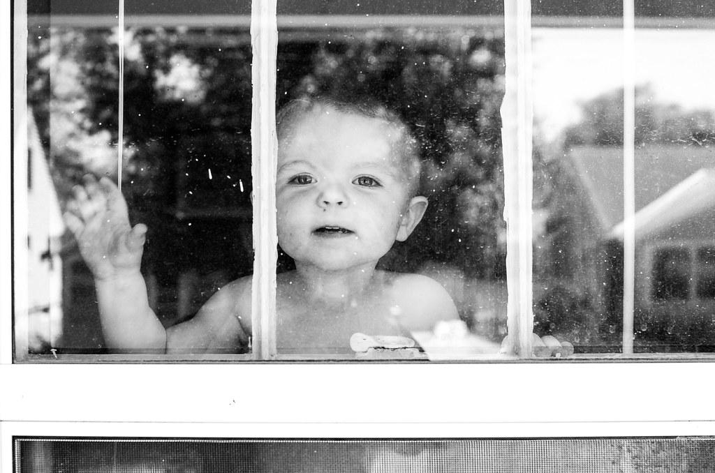 Ezra at the Window