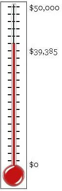 thermometer (34)