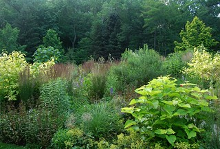 Chanticleer - Returning to the Garden Four Weeks Later (Mid-June) | by UGArdener