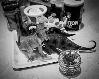 The dinosaur guests. | by Fluttering By
