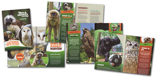 Owl and Monkey Haven Guidebook 2014 | by s0ulsurfing