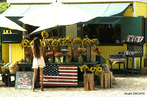 Sunflowers and the model - Amagansett | by MY PINK SOAPBOX