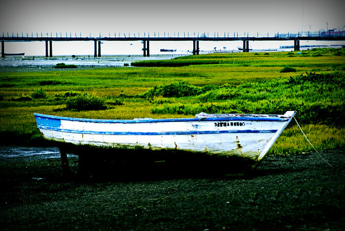 Boat ashore. | by gilxxl