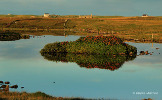 Uist Morning | by SandiePhotos.com