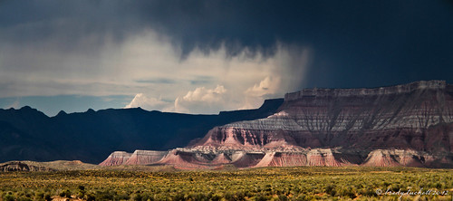 Thunderstorms in Zion | by brady tuckett