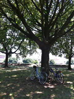 Biking in Lucca | by ethorson
