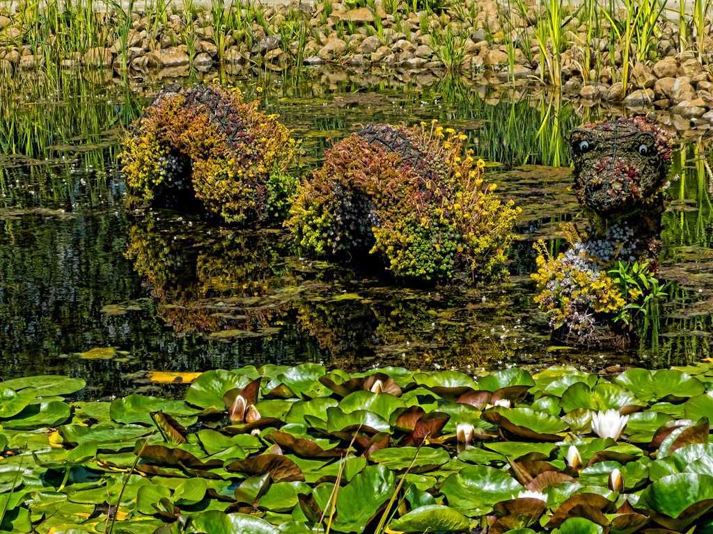 A sea serpent-shaped topiary bristling with flowers in a l… | Flickr