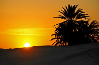 Tunisia-3749 - Here comes the sun..... | by archer10 (Dennis) 149M Views