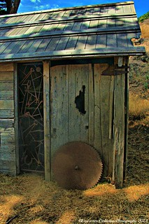 Circular Saw and Implement Shed | by lhg_11, 2million views. Thank you!