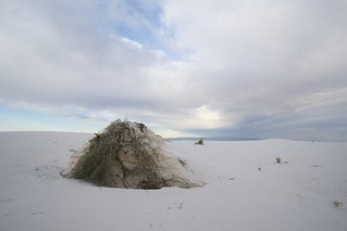 White Sands National Monument | by amorimur