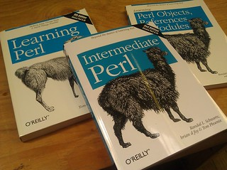 perl books | by Liz Henry