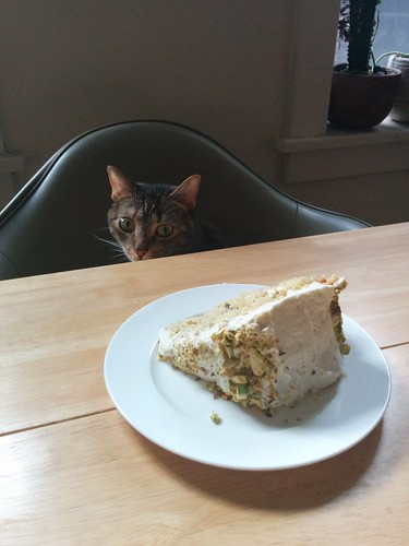 Round 1: Z vs. Honey-Pistachio Cake