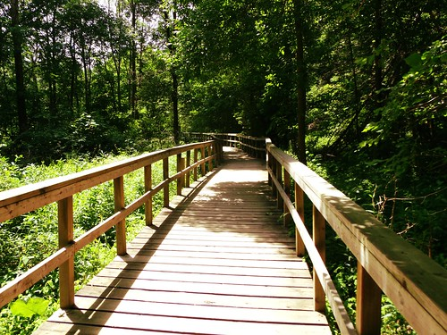 Boardwalk At Rattay Marsh Conservation Area, Mississauga Ontario | by Greg's Southern Ontario (catching Up Slowly)