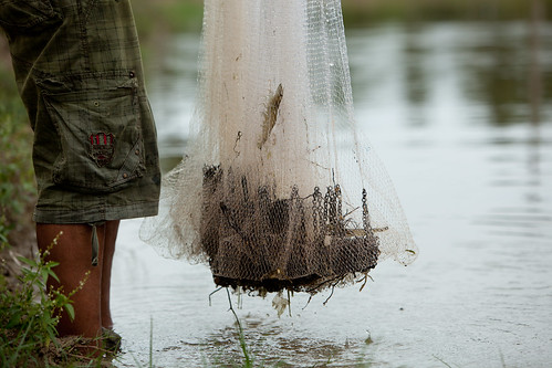 Shrimp farmer in Aceh, Indonesia. Photo by Mike Lusmore/Duckrabbit, 2012.