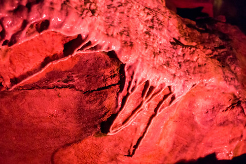 Howe Caverns - Howes Cave, NY - 2012, Apr - 12.jpg | by sebastien.barre