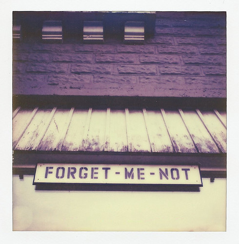 forget me not | by .{kim unscripted}.