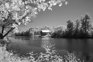 19800101infrared055.jpg | by bs3egl