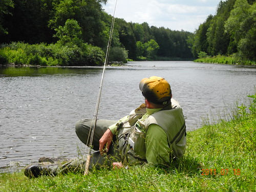 Fishing between belwood lake and fergus grand river for Grand river fishing