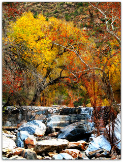A Dam in the Canyon | by Terry -Pueblo Paradiso