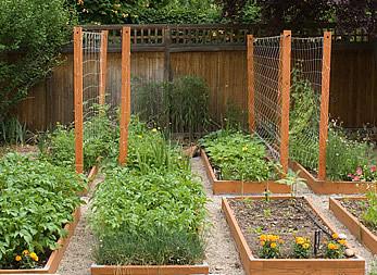 Merveilleux ... Garden Vegetable Trellis   By Heath U0026 The B.L.T. Boys