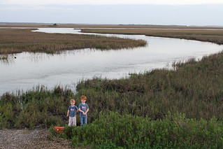 Out in the Marsh land between St. Helena Island and Hunting Island South Carolina | by babyfella2007