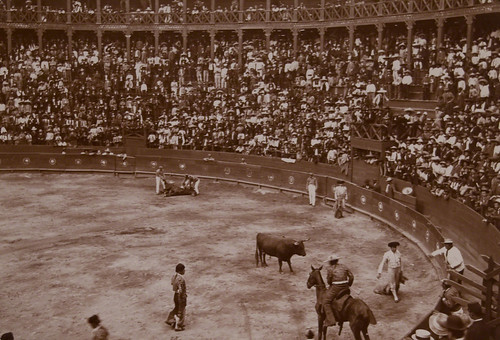 Bullfight, Picador | by Museum of Photographic Arts Collections