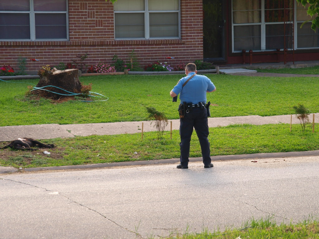 ... Warning viewer discretion is advised Houston Texas Some Assholes  pit-bull was think he could