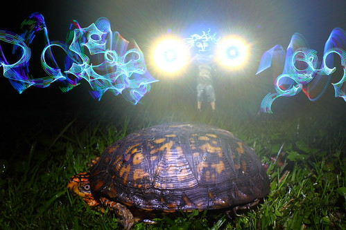 Tackyman & Tuck the Turtle | by tackyshack