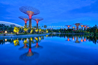 where wonder blooms, Gardens By The Bay | by f r e d 001