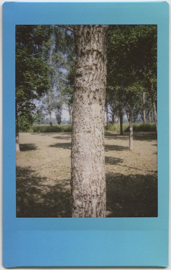 Fujifilm Instax Mini 8 Sample Photos
