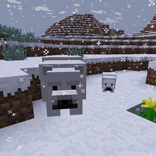 I found a polar bear and her cub in #Minecraft. | by Steve Rolston