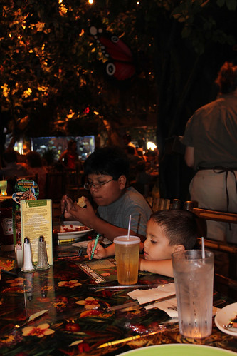 Rainforest Cafe Galveston Tx Menu Prices