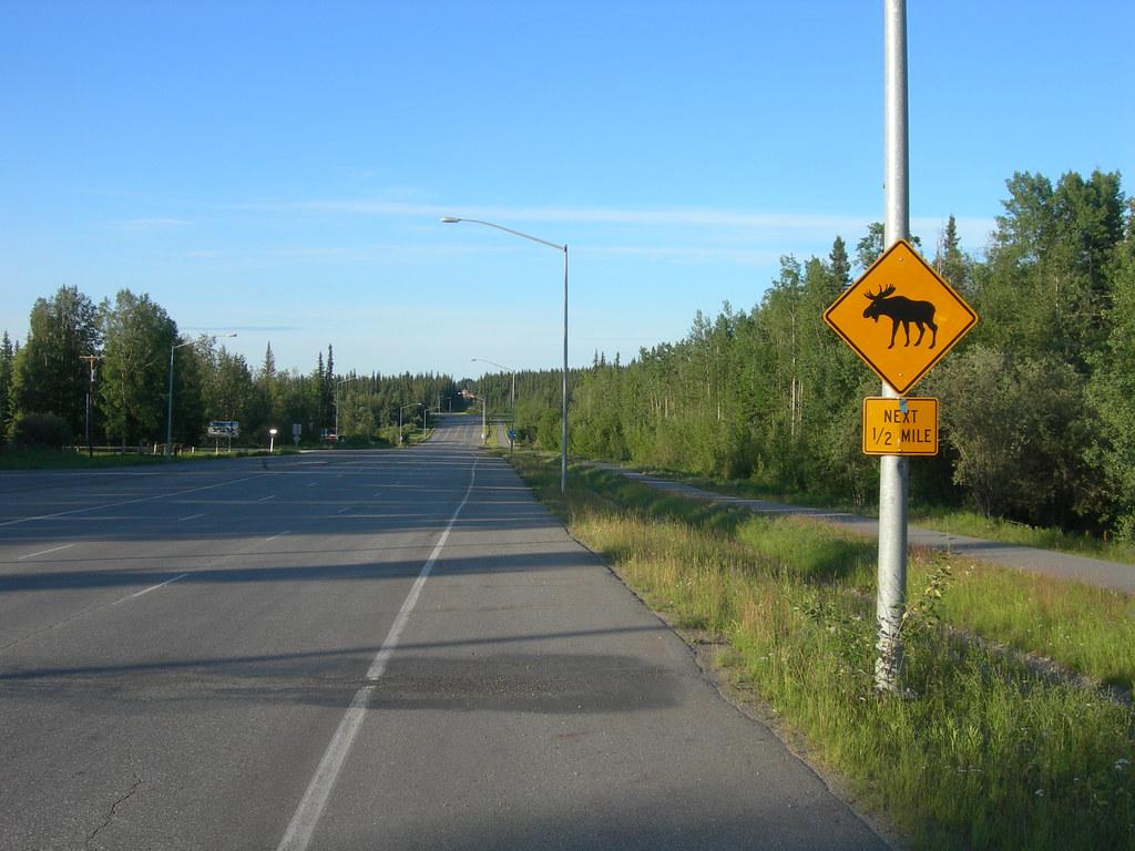 moose crossing sign fairbanks jimmy emerson dvm flickr