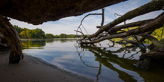 Fox River From Under a Dead Tree | by jeff_a_goldberg