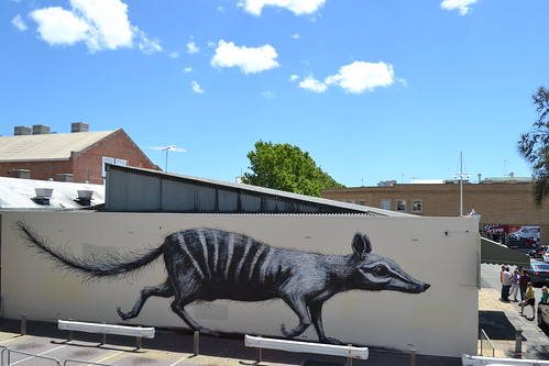 Fremantle (WA) -numbat | by ROA !