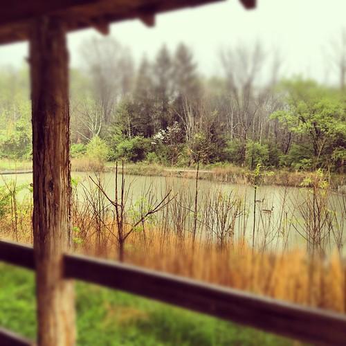 Nature Center Cincinnati Weddin