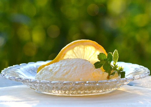 Lemon mousse (Explored) | by hcorper