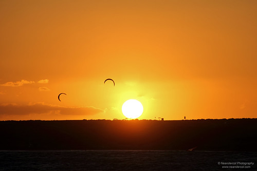 Kites in the Sunset | by neandercol