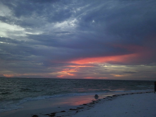 how to get married on anna maria island