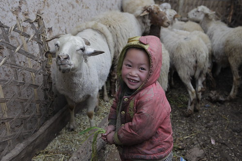 Meigu Project (22-0017-72) | by Heifer International
