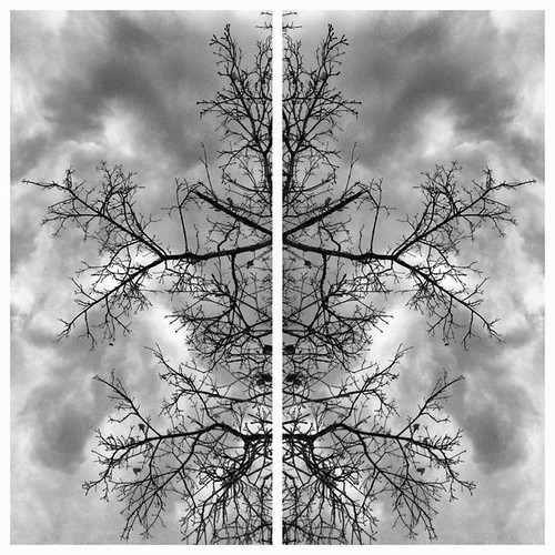 An Early Winter | iPhoneography | by Richard Cawood