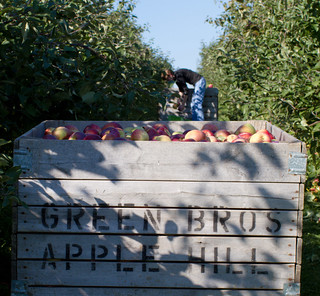 Apple Hill Farms | by waitscm
