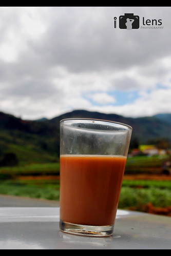 Ooty is famous for 2 things.... 1. Tea 2. Ooty | by Invisible Lens Photography