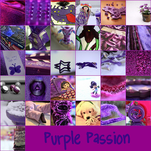 purple passion | by Canadian Wendy 24 taking the summer off
