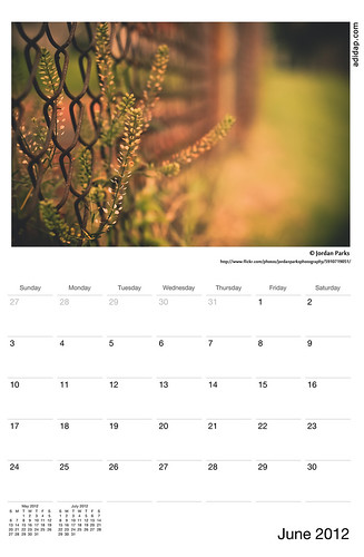 ADIDAP Calendar 2012 US June | by akhater